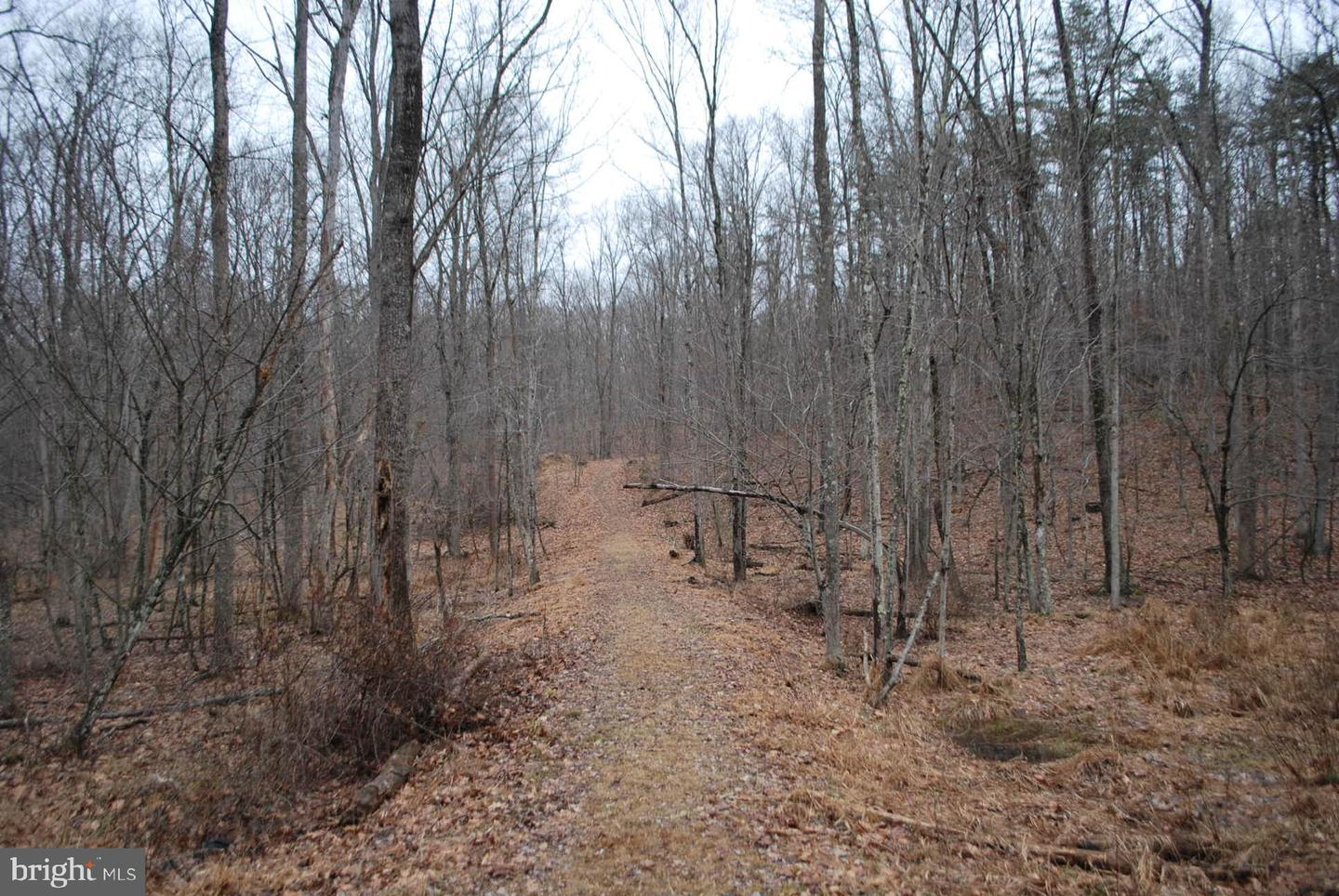 Land for Sale at Wv Route 13 / 6 Blue Brook Rd. Berkeley Springs, West Virginia 25411 United States