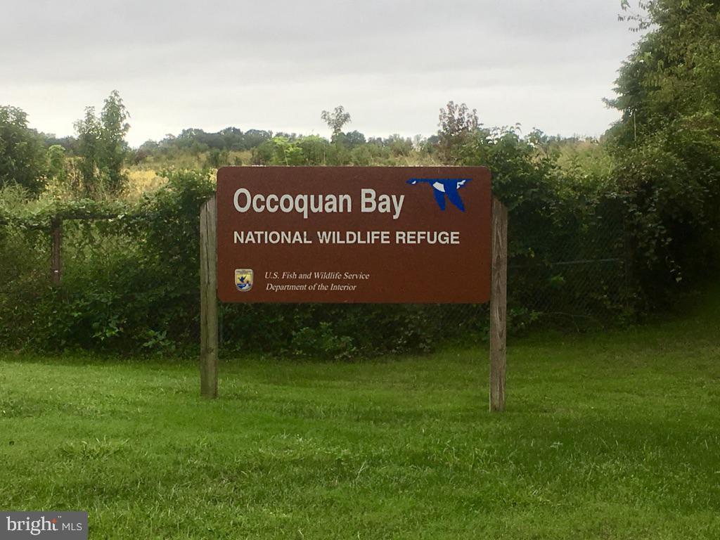 Occoquan Bay Wildlife Refuge - 13375 COLCHESTER FERRY PL, WOODBRIDGE