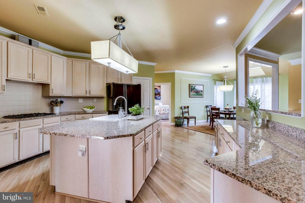 Gourmet kitchen with granite counters - 10522 DUNN MEADOW RD, VIENNA