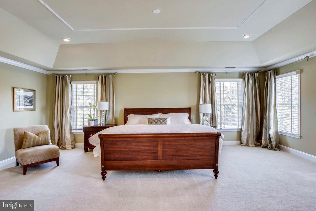 Master Bedroom suite - 10522 DUNN MEADOW RD, VIENNA