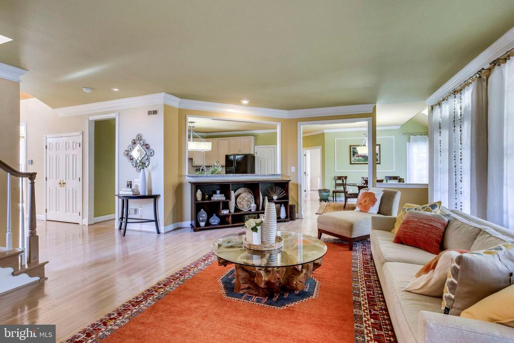 Main level Family Room - 10522 DUNN MEADOW RD, VIENNA