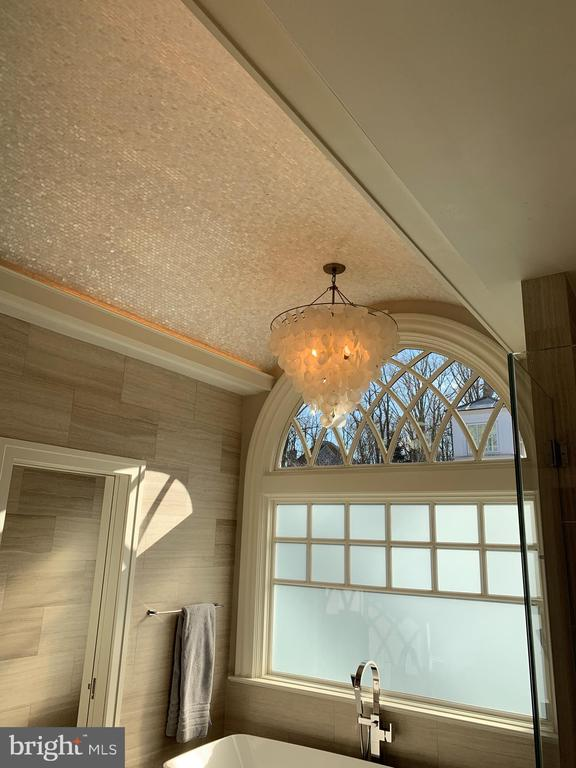 Barrel ceiling w/glimmering mosaic tiles - 7301 DULANY DR, MCLEAN