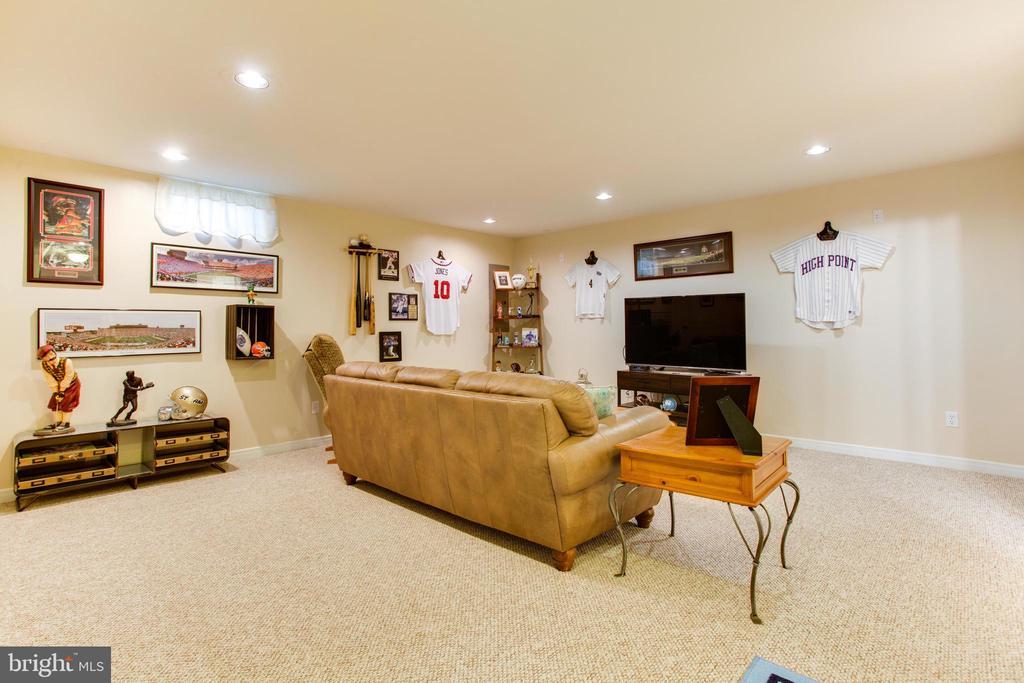 basement - 42566 NATIONS ST, CHANTILLY