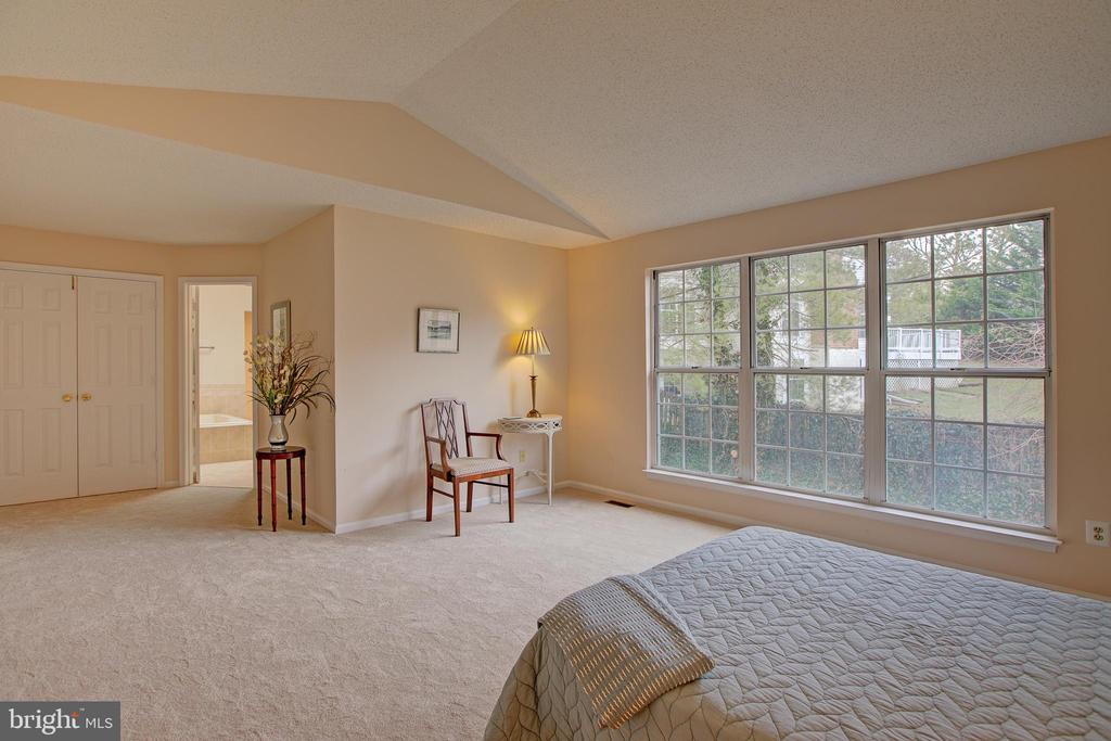 A luxurious space to relax - 12311 CLIVEDEN ST, HERNDON