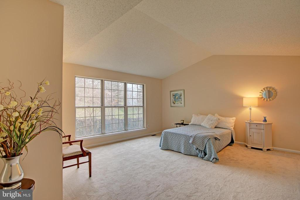 Master Bedroom has cathedral ceiling and lots of l - 12311 CLIVEDEN ST, HERNDON