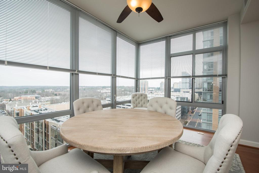 View of the mountains. - 11990 MARKET ST #1117, RESTON