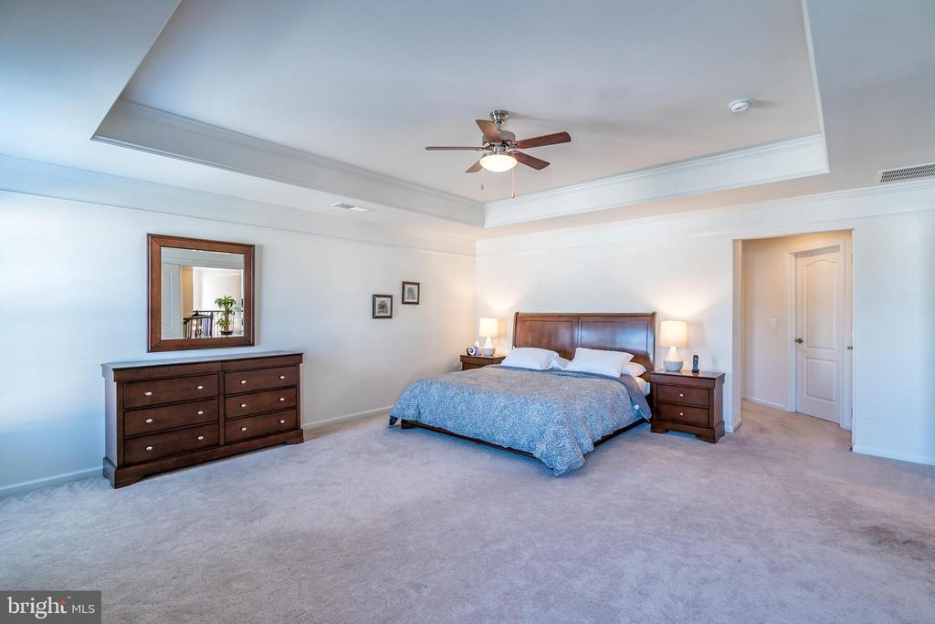 Trey Ceiling in Massive Master Bedroom - 42660 PARADISE SPRING CT, BRAMBLETON