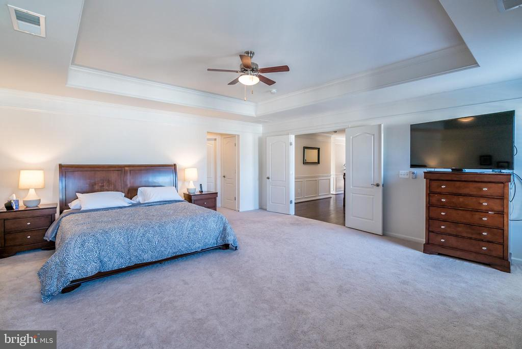 Amazing Master Bedroom! - 42660 PARADISE SPRING CT, BRAMBLETON