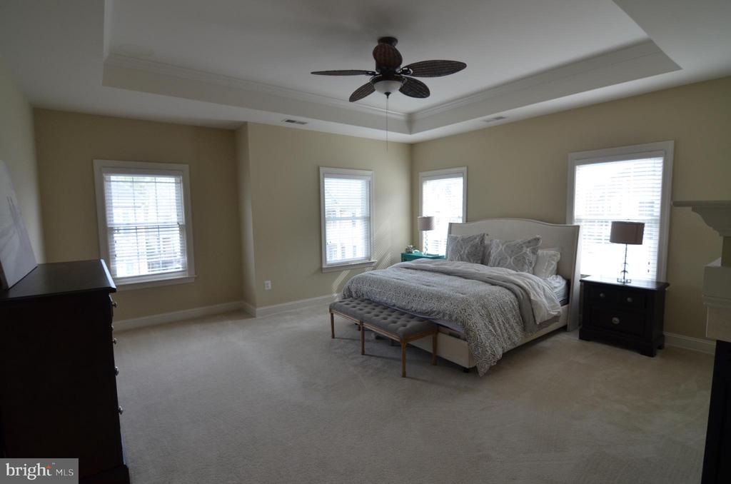 Master Bedroom with Tray Ceiling - 10339 SOUTHAM LN, OAKTON