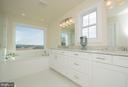 Large Master Bathroom 10' counter, tub & shower - YAKEY LN, LOVETTSVILLE