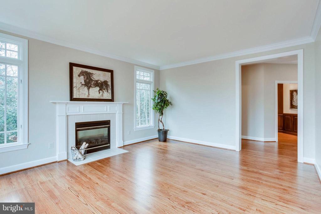 Living Room - 1386 CAMERON HEATH DR, RESTON
