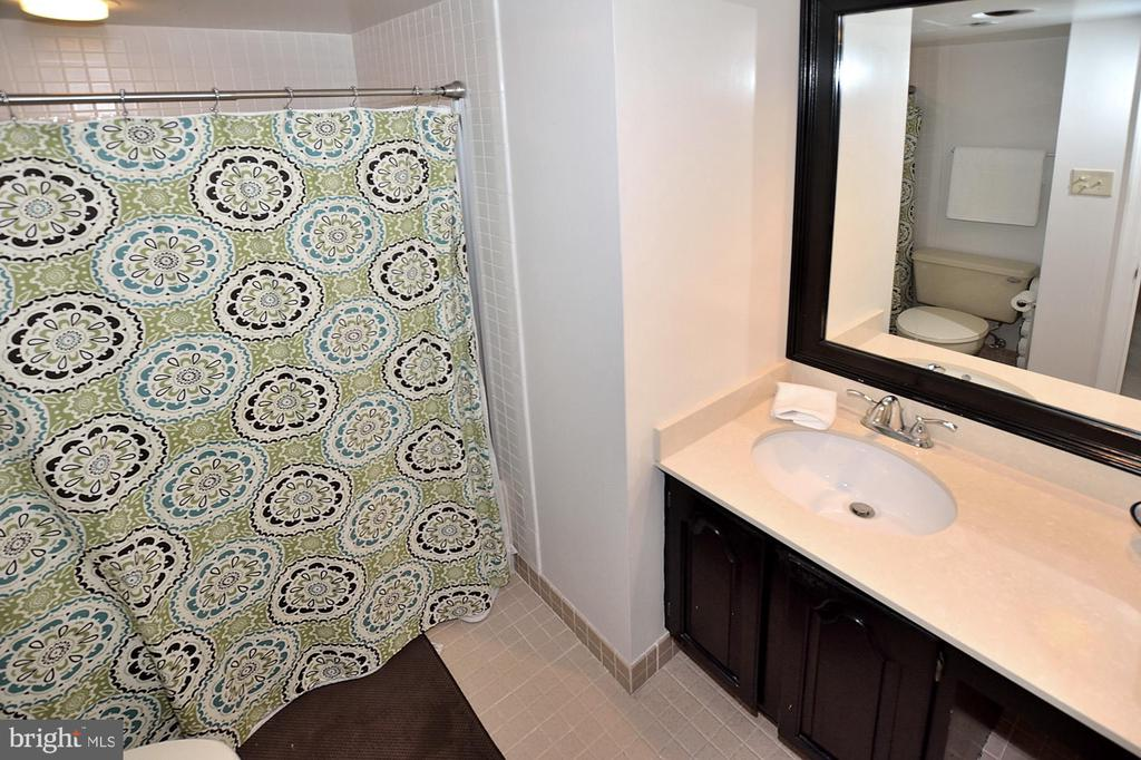 MASTER BATH - 1301 N COURTHOUSE RD N #1809, ARLINGTON