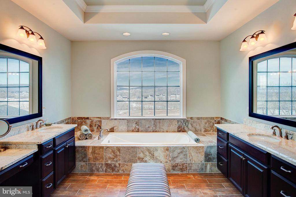 Upgraded spa bath with mountain views! - 18607 MONTAGUE PL, PURCELLVILLE