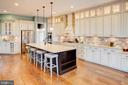 Stainless appliances and pendant lighting - 18607 MONTAGUE PL, PURCELLVILLE