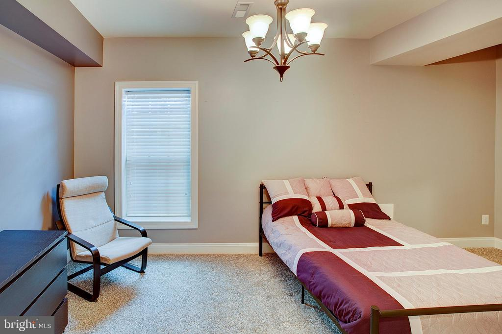 Lower level fifth bedroom - 18607 MONTAGUE PL, PURCELLVILLE