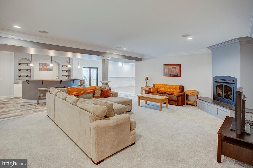 Lower level family room - 18607 MONTAGUE PL, PURCELLVILLE