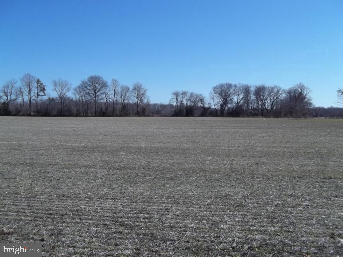 Land for Sale at Bilbrough Road Greensboro, Maryland 21639 United States