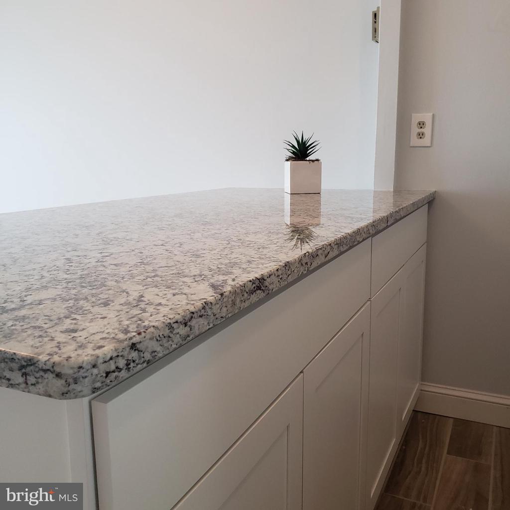 Granite countertop - 2500 N VAN DORN ST #909, ALEXANDRIA