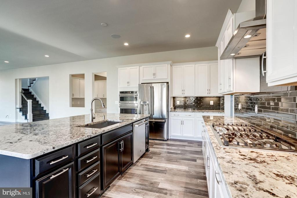Annefield Kitchen - 24462 CAROLINA ROSE CIR, ALDIE