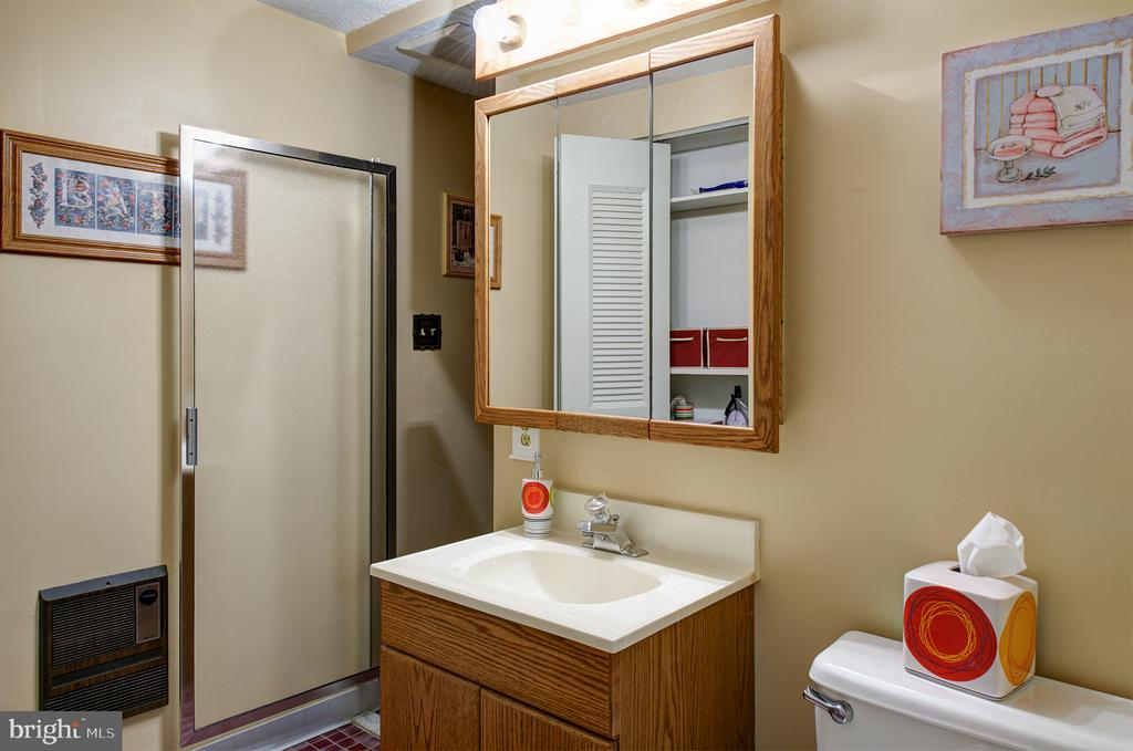 Lower level bath with soaking tub & shower stall - 3295 BLUE HERON DR, FALLS CHURCH