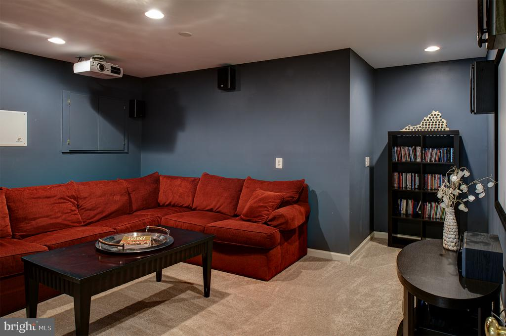 Lower level viewing room - 6717 ECKERT CT, WARRENTON