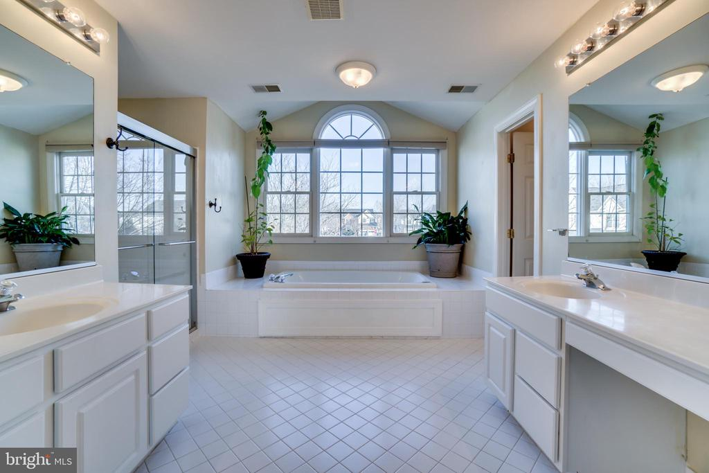 Spacious master bath, soaking tub, double sinks - 42922 PALLISER CT, LEESBURG