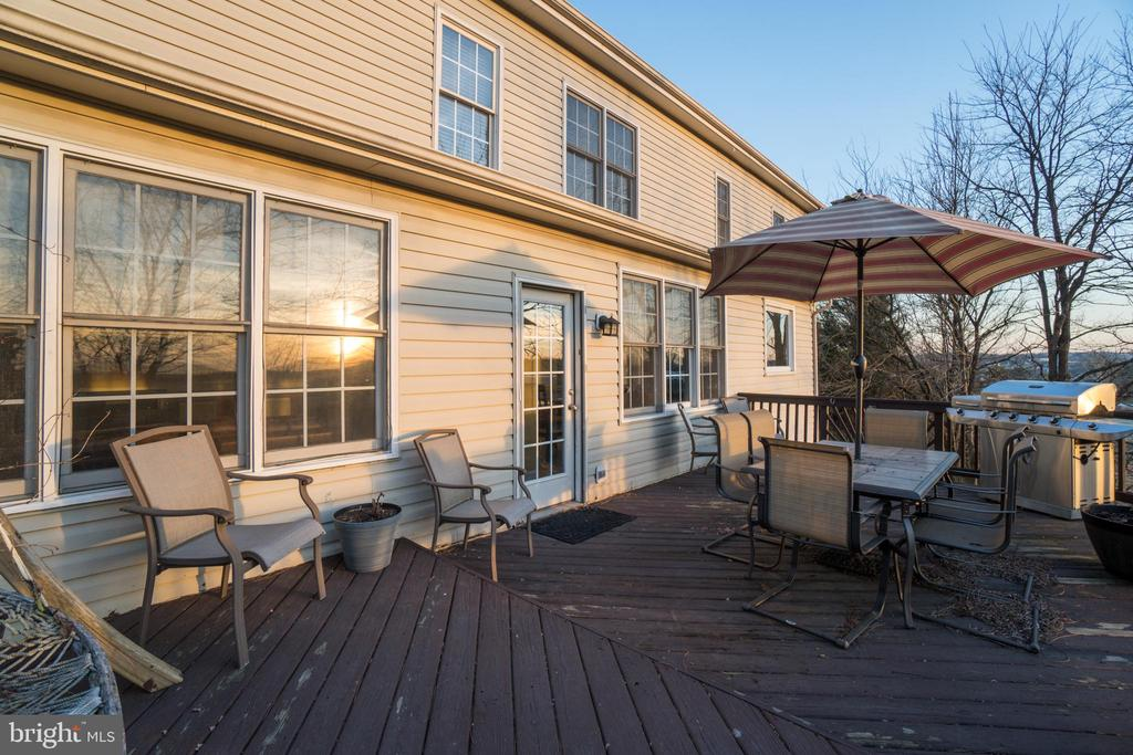 Sizeable back deck, perfect for entertaining - 42922 PALLISER CT, LEESBURG