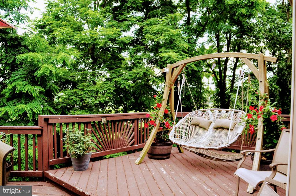 A haven in the spring/summer! - 42922 PALLISER CT, LEESBURG