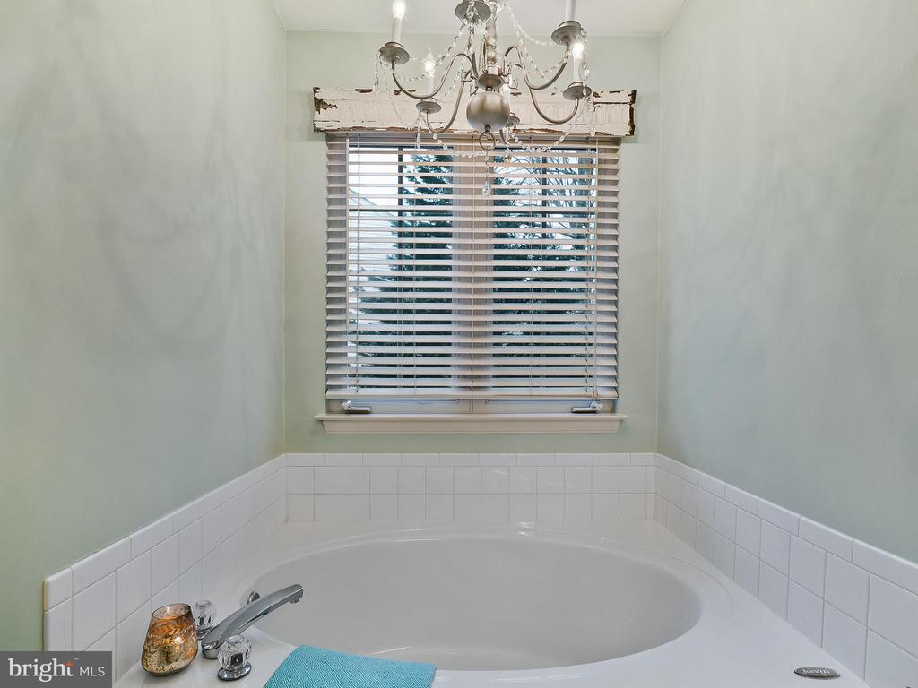 Master Bathroom with soaking tub - 5629 EPPES ISLAND PL, MANASSAS