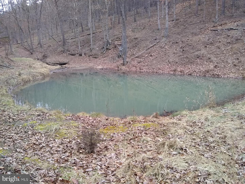 Terreno para Venda às Rig, West Virginia 26836 Estados Unidos