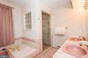 Separate Shower & tub - 5916 HALLOWING DR, LORTON