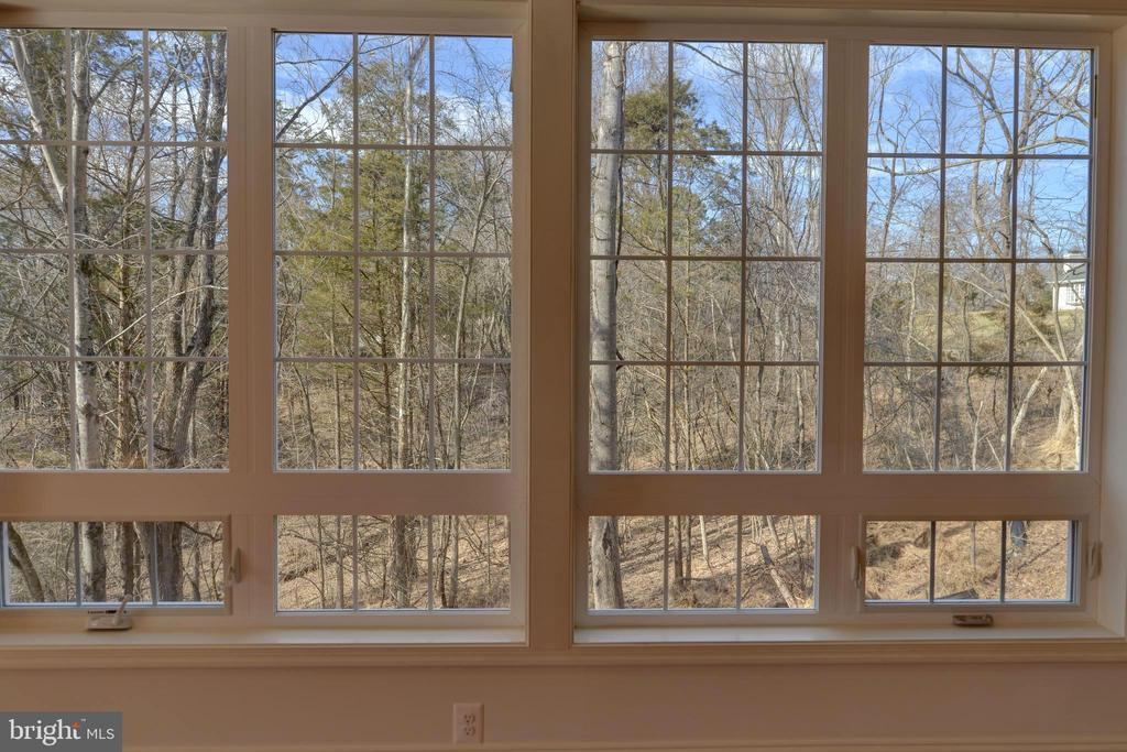 Lots of windows...transoms on bottom for breeze - 39163 ALDIE RD, ALDIE