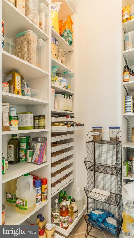 Pantry with Pull-Out Shelves - 17473 FOUR SEASONS DR, DUMFRIES