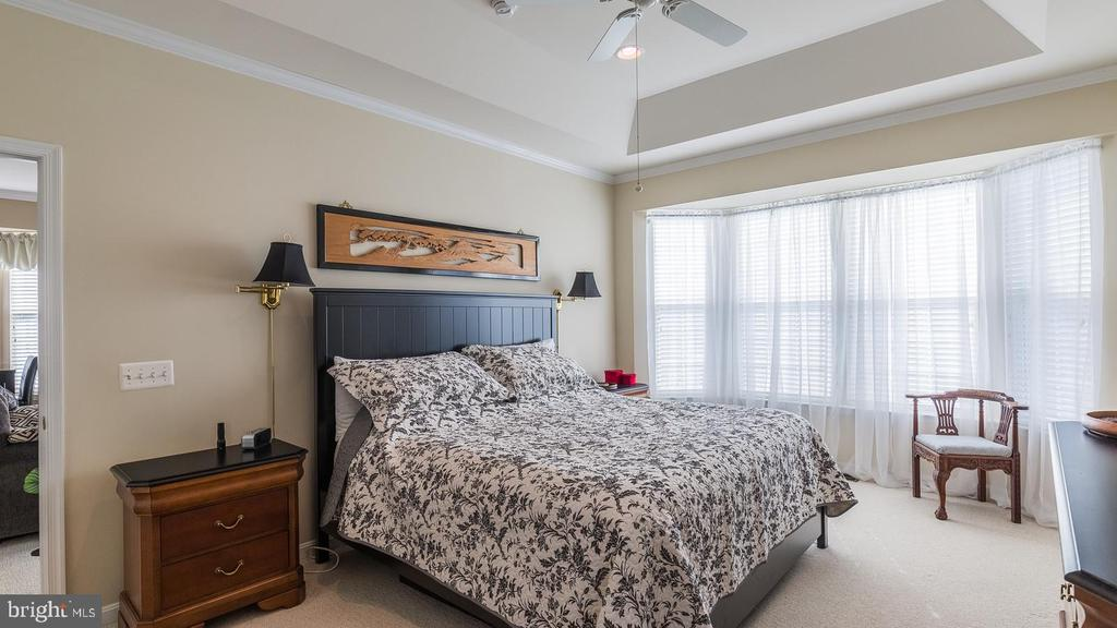 Master Bedroom with Bay Window & Tray Ceiling - 17473 FOUR SEASONS DR, DUMFRIES