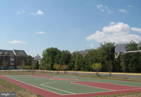 Basketball Court - 42839 SYKES TER, CHANTILLY