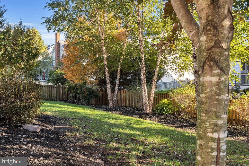 Fully fenced yard - 42445 MEADOW SAGE DR, BRAMBLETON
