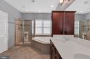 Separate soaking tub and shower - 42445 MEADOW SAGE DR, BRAMBLETON
