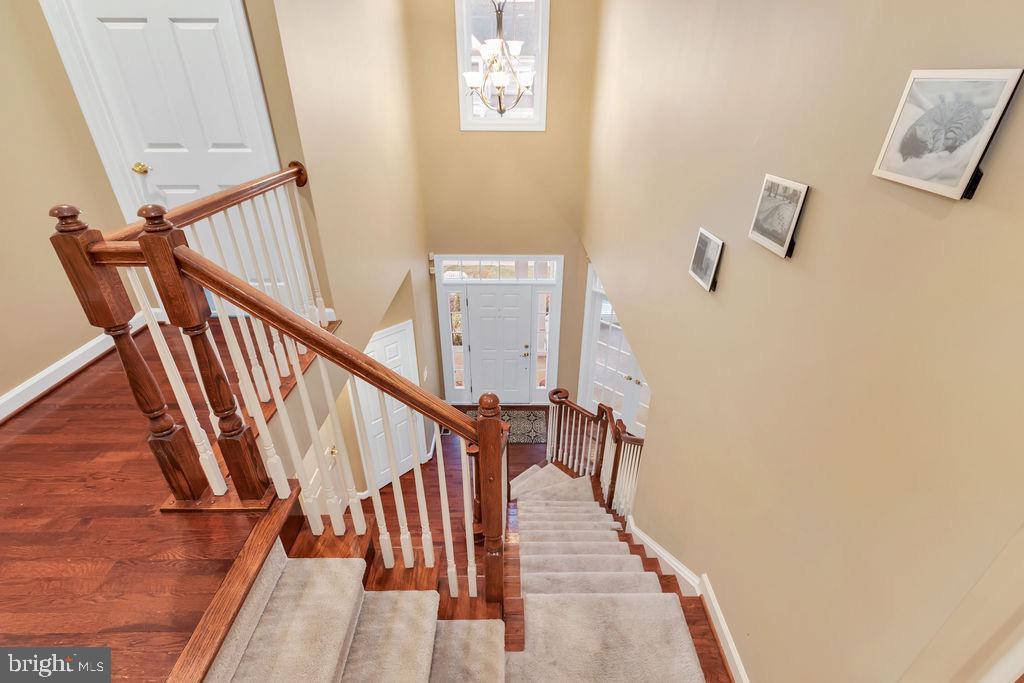 Stairwell - 42445 MEADOW SAGE DR, BRAMBLETON