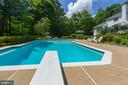 Refreshing Pool amidst the tranquil backyard - 12970 WYCKLAND DR, CLIFTON