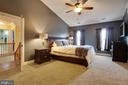 Vaulted ceiling, ceiling fan, walk-in closet - 3713 STONEWALL MANOR DR, TRIANGLE