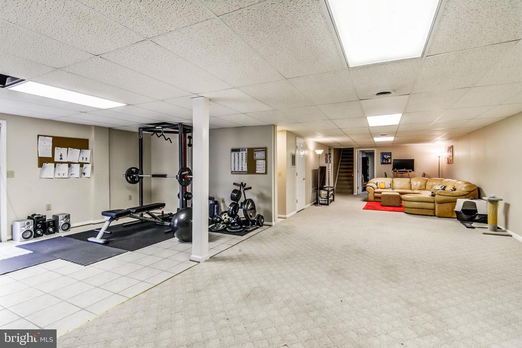Plenty of room to workout, or play! - 65 GREEN ACRE DR, STAFFORD