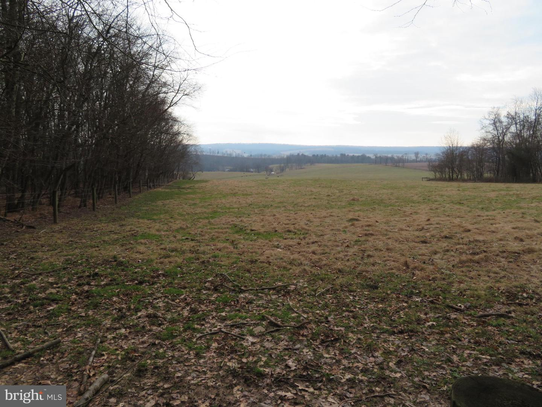 Land for Sale at Dornsife, Pennsylvania 17823 United States