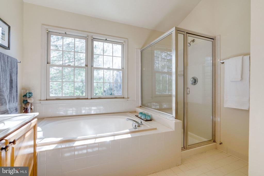 Master Bath Soaking Tub and Separate Shower - 8111 RIDGE CREEK WAY, SPRINGFIELD