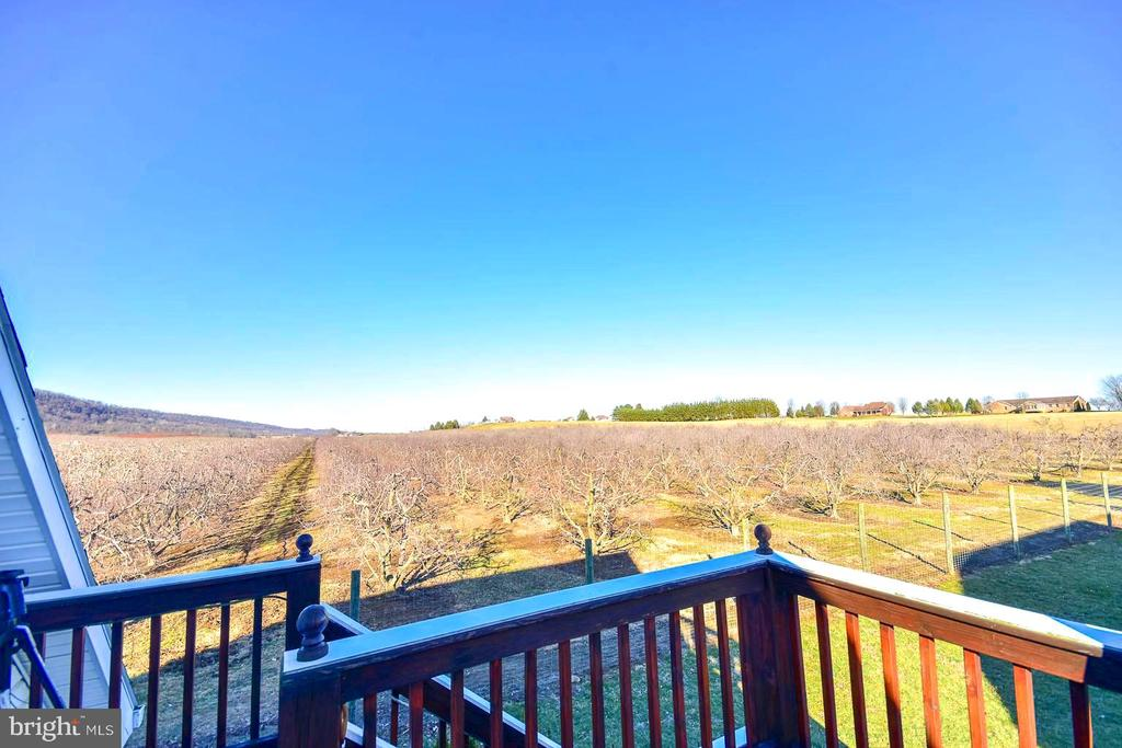Guest Suite Deck Views of Orchard - 200 CHESWICK, MARTINSBURG