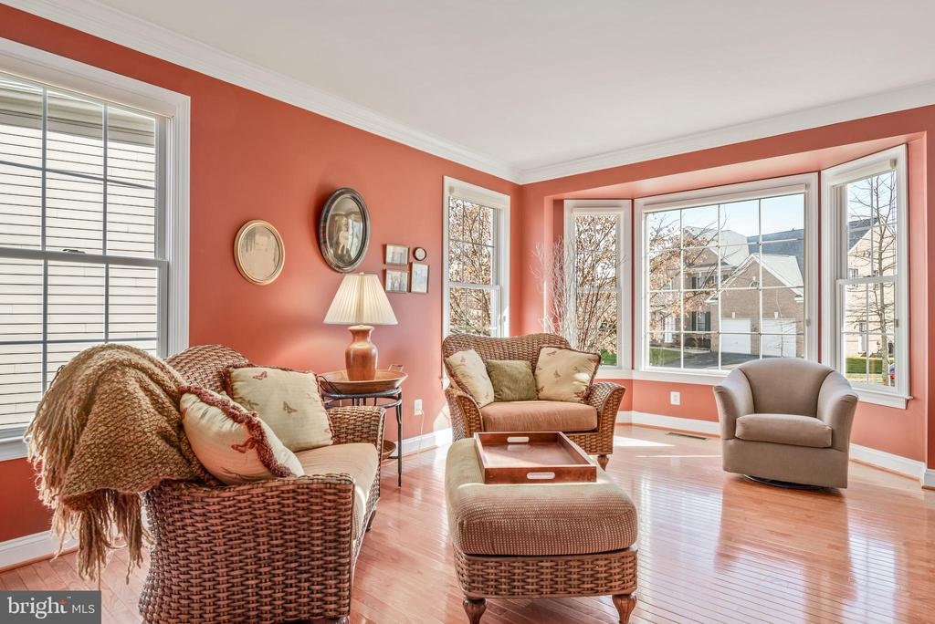 Bright, cozy living room - 19030 COTON FARM CT, LEESBURG