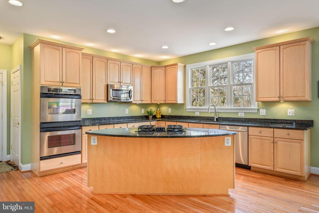 Stainless steel appliances and granite - 19030 COTON FARM CT, LEESBURG
