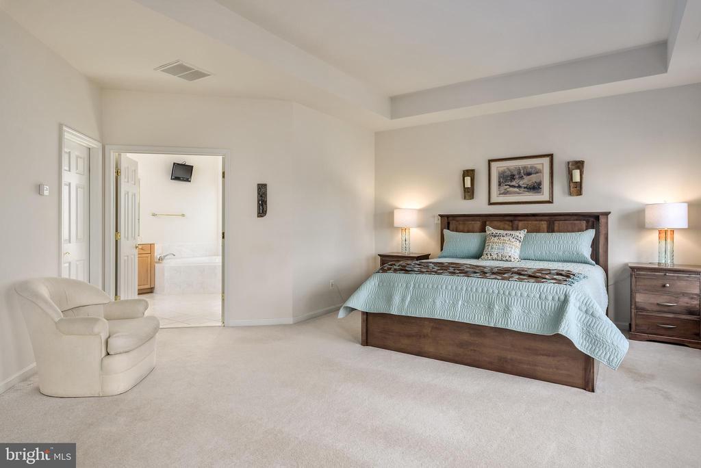 Master bedroom - 19030 COTON FARM CT, LEESBURG