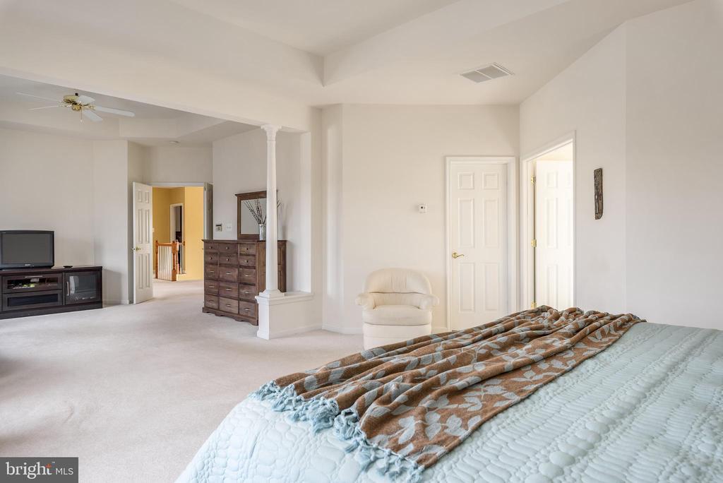 Bonus space in the master bedroom - 19030 COTON FARM CT, LEESBURG