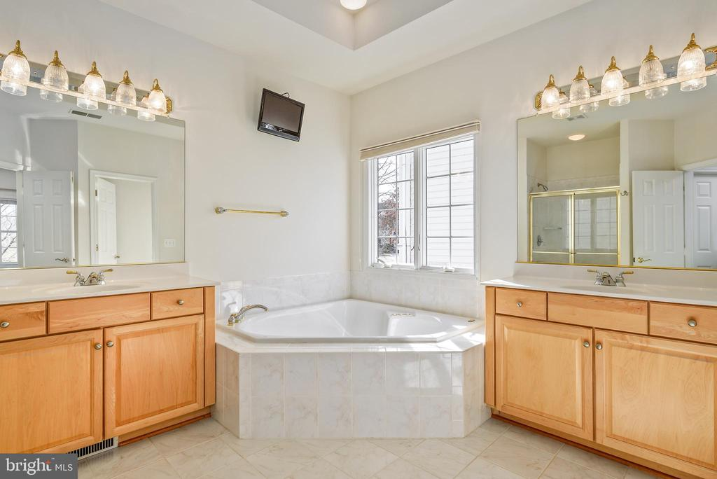 Dual sinks, large soaking tub in the master bath - 19030 COTON FARM CT, LEESBURG