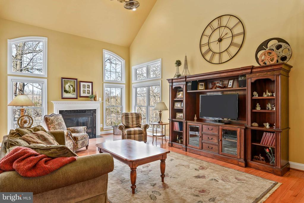Tall windows make a light and bright familiy room - 19030 COTON FARM CT, LEESBURG